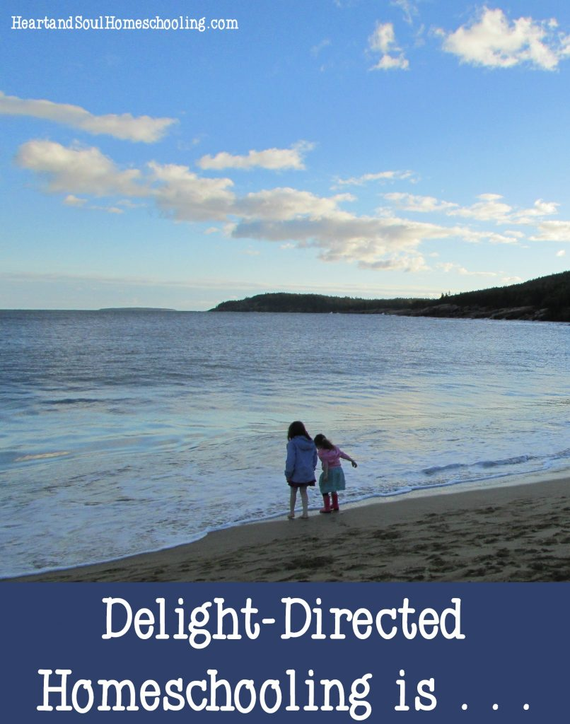 Delight-directed homeschooling is . . . the major principles of delight-directed learning